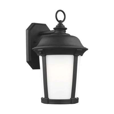 Calder 1-Light Large Black Outdoor Wall Mount Lantern with LED Bulb