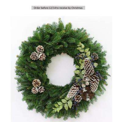 24 in. Fresh Christmas Blueberry Fraser Fir Evergreen Wreath