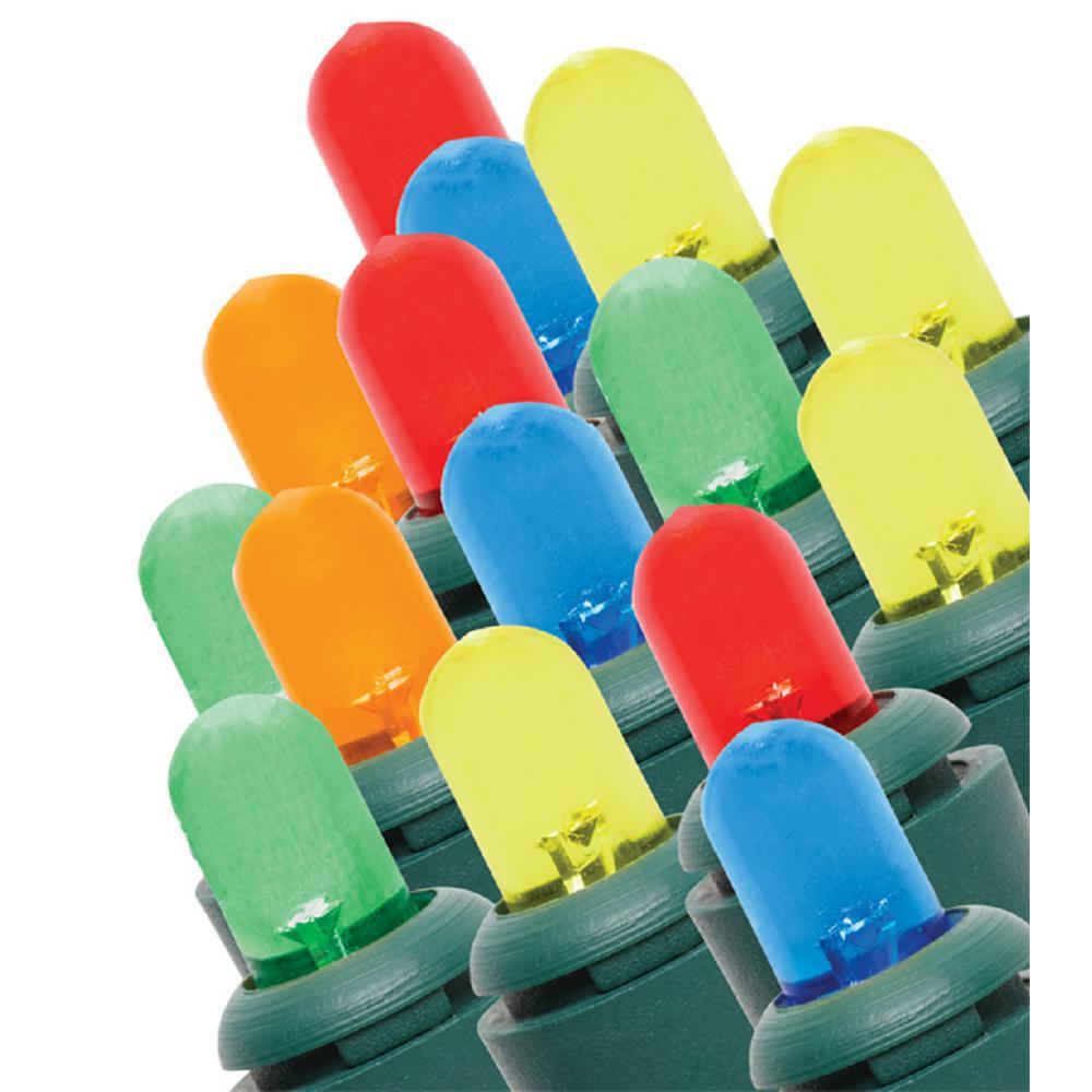 24 ft. 100-Light Multi-Color LED Dome Light String