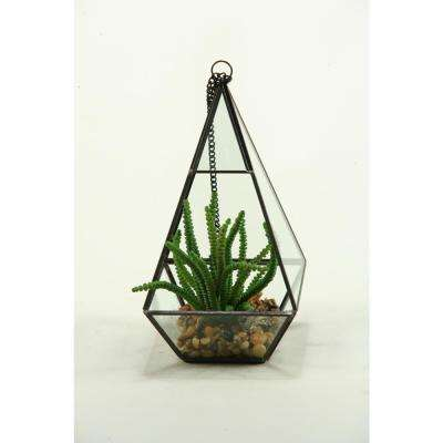 Indoor Worm Plant in Geometric Glass Pyramid