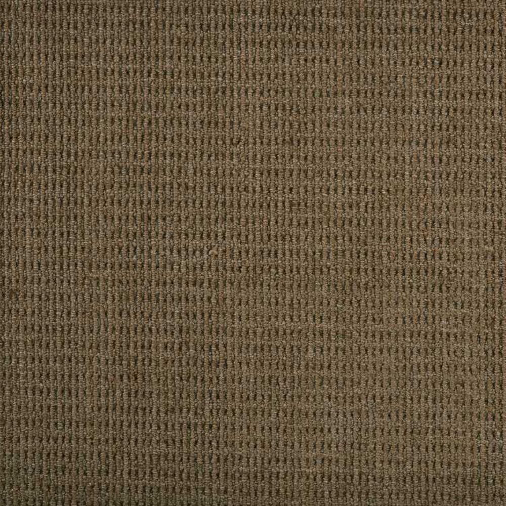 Carpet Sample - Terrain - Color Taupe Loop 8 in. x 8 in.