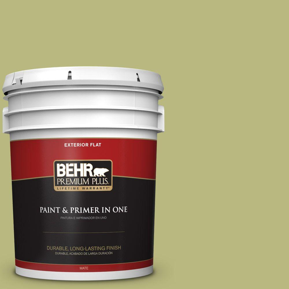 BEHR Premium Plus 5-gal. #400D-5 Grass Cloth Flat Exterior Paint