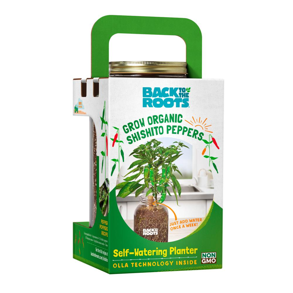 back to the roots self watering planter organic shishito pepper