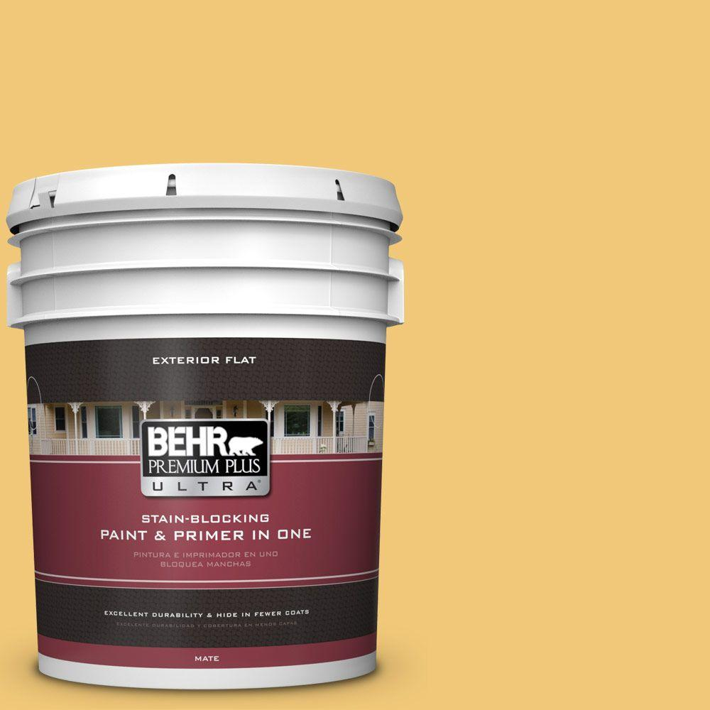 BEHR Premium Plus Ultra 5-gal. #T14-19 Sunday Afternoon Flat Exterior Paint