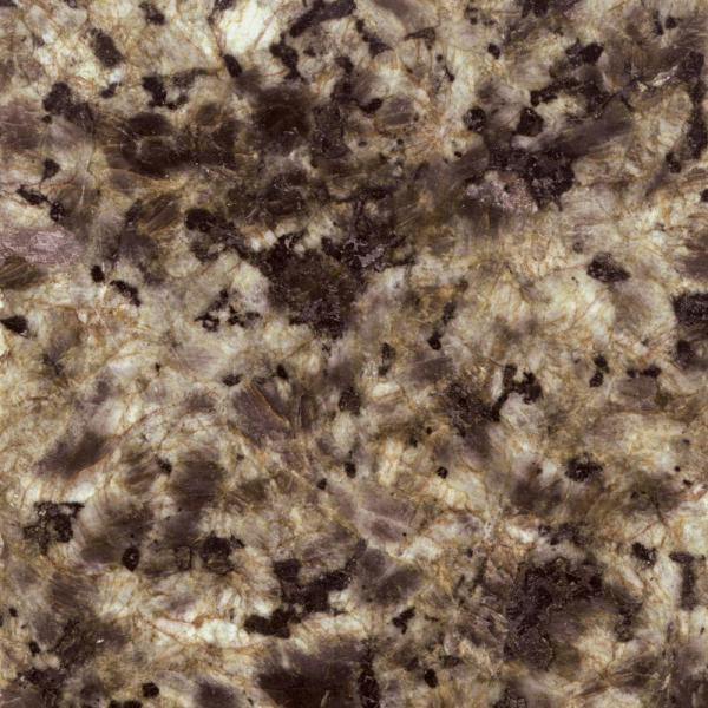 4 in. Quadro Granite Sample Chip