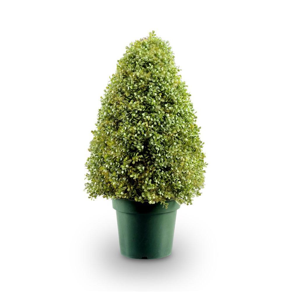 3 ft. Boxwood Tree in Dark Green Round Plastic Urn