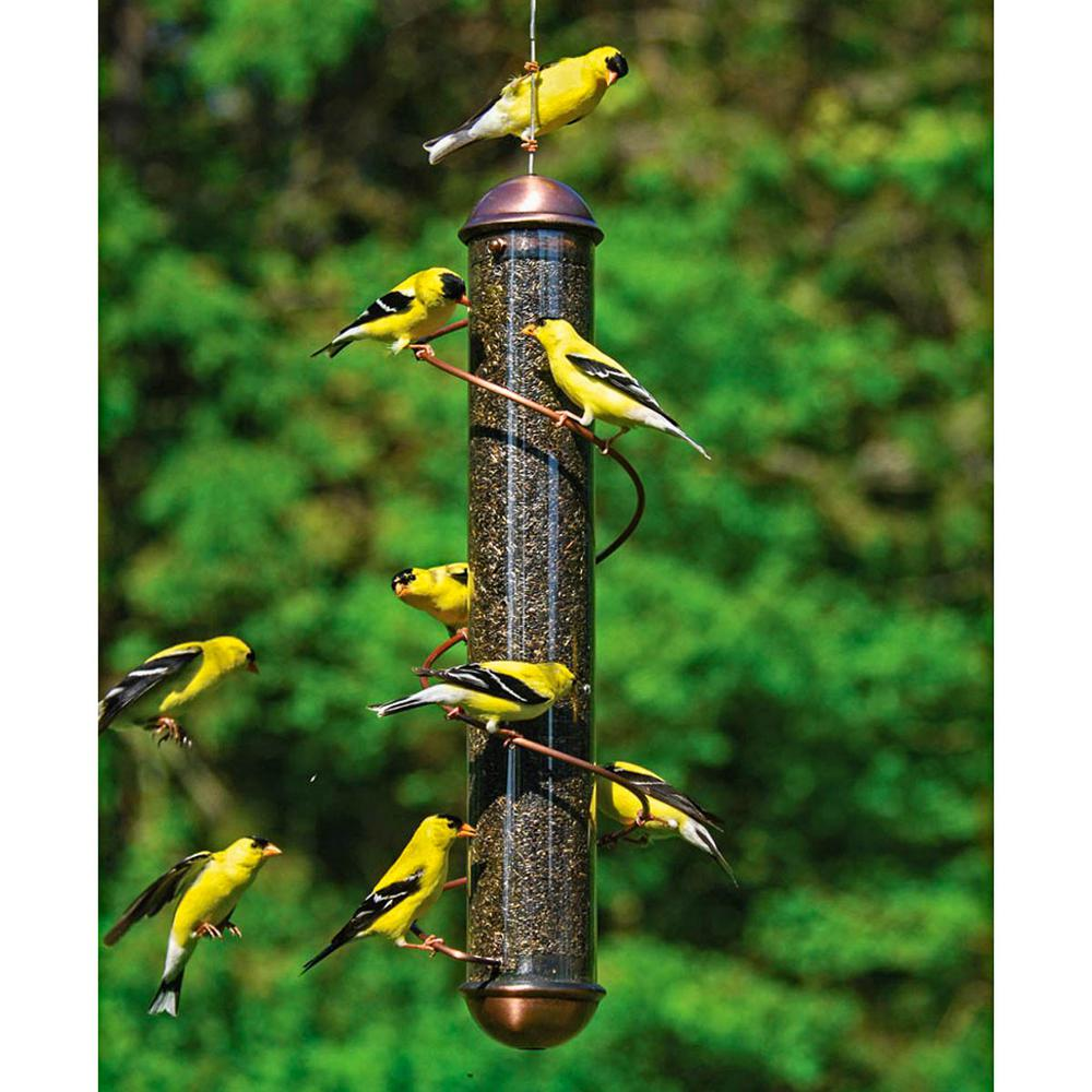 AUDOBON 18.50 In Tall Backyard Finch Feeder with Copper ...