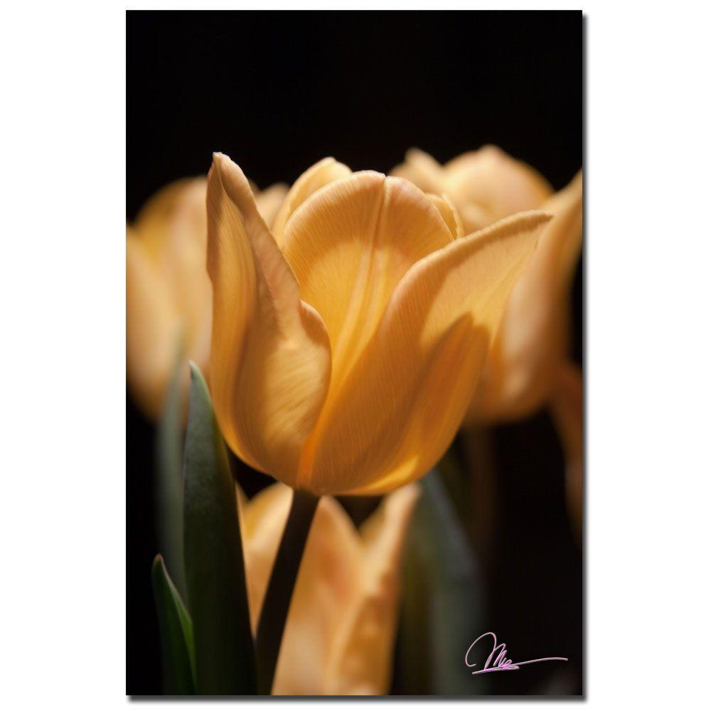 24 in. x 16 in. Tulips Blooms VII Canvas Art