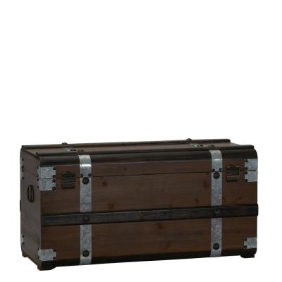 Large Steel Brown Band Trunk
