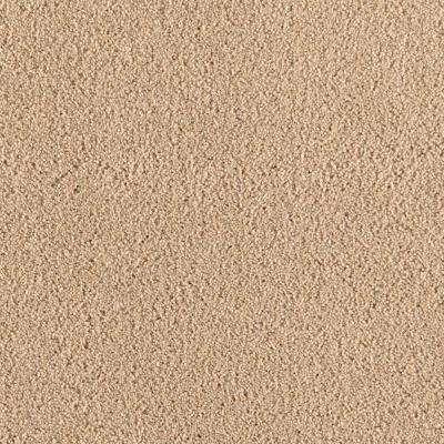San Rafael I (S) - Color Almond Shell Texture 12 ft. Carpet