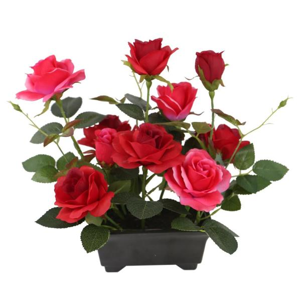 10 in. Potted Red Rose Flowers