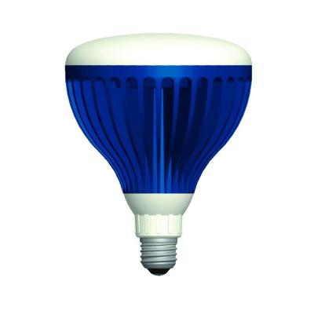 22-Watt Pure White 120-Volt LED Pool Light Bulb