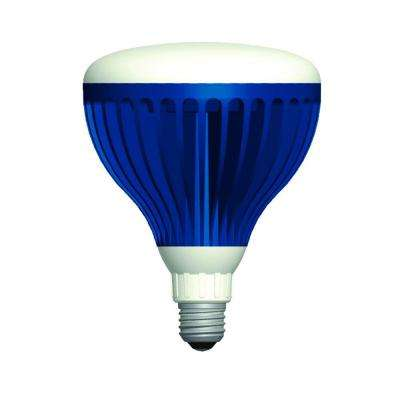 22-Watt Pure White 120-Volt LED Pool Light Bulb