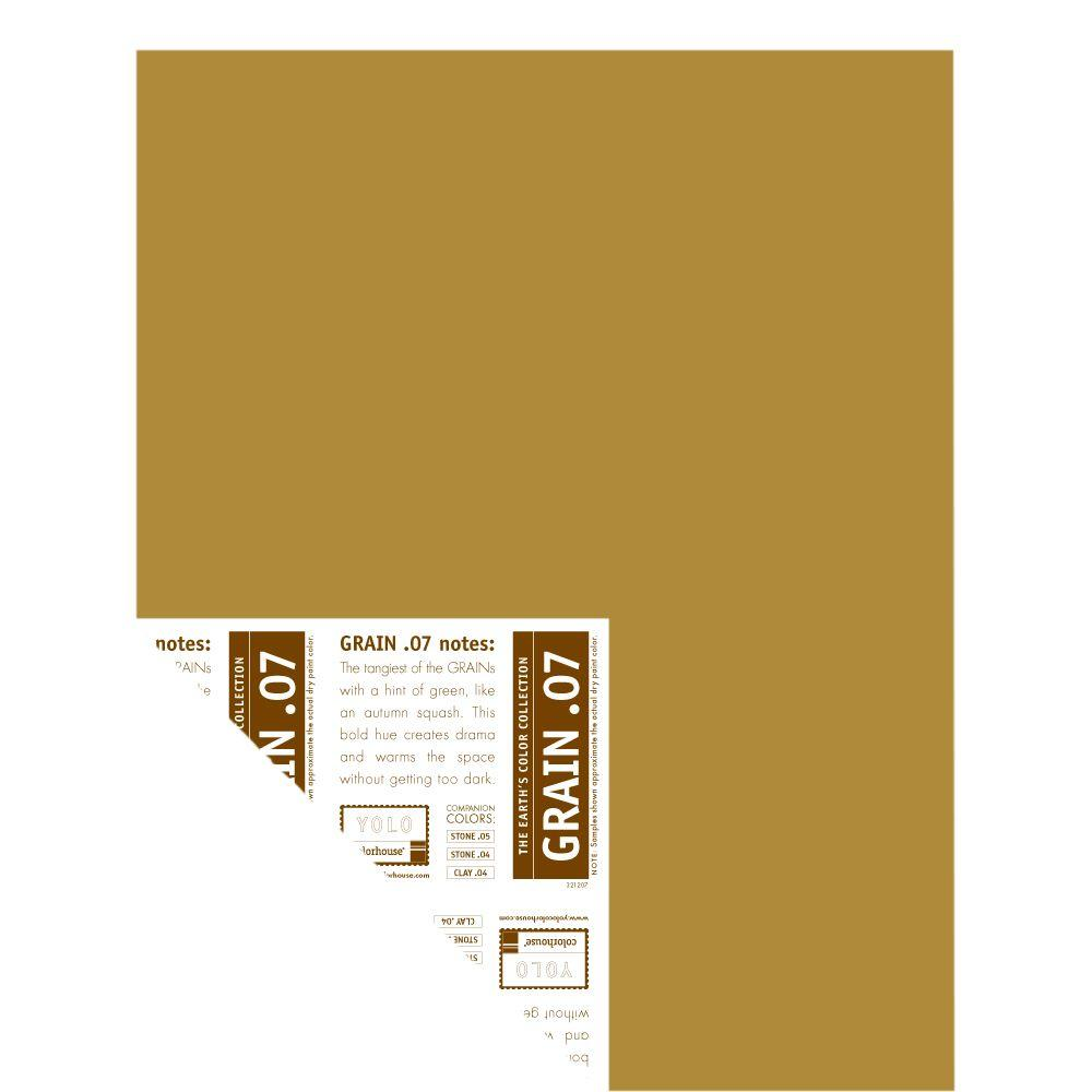 YOLO Colorhouse 12 in. x 16 in. Grain .07 Pre-Painted Big Chip Sample