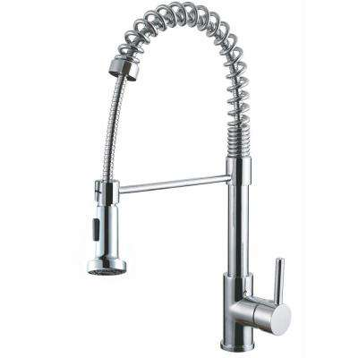 Luxurious Single-Handle Pull-Out Sprayer Kitchen Faucet in Polished Chrome