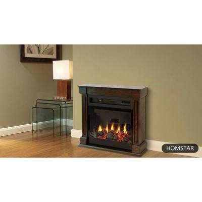 Traditional 29 in. Freestanding Infrared Electric Fireplace in Brown Oak with Remote