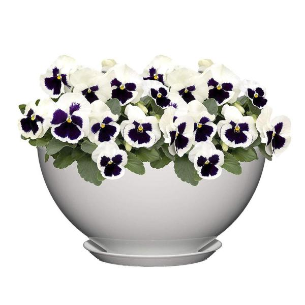 10 in. Stark White Rosie Bowl Resin Planter