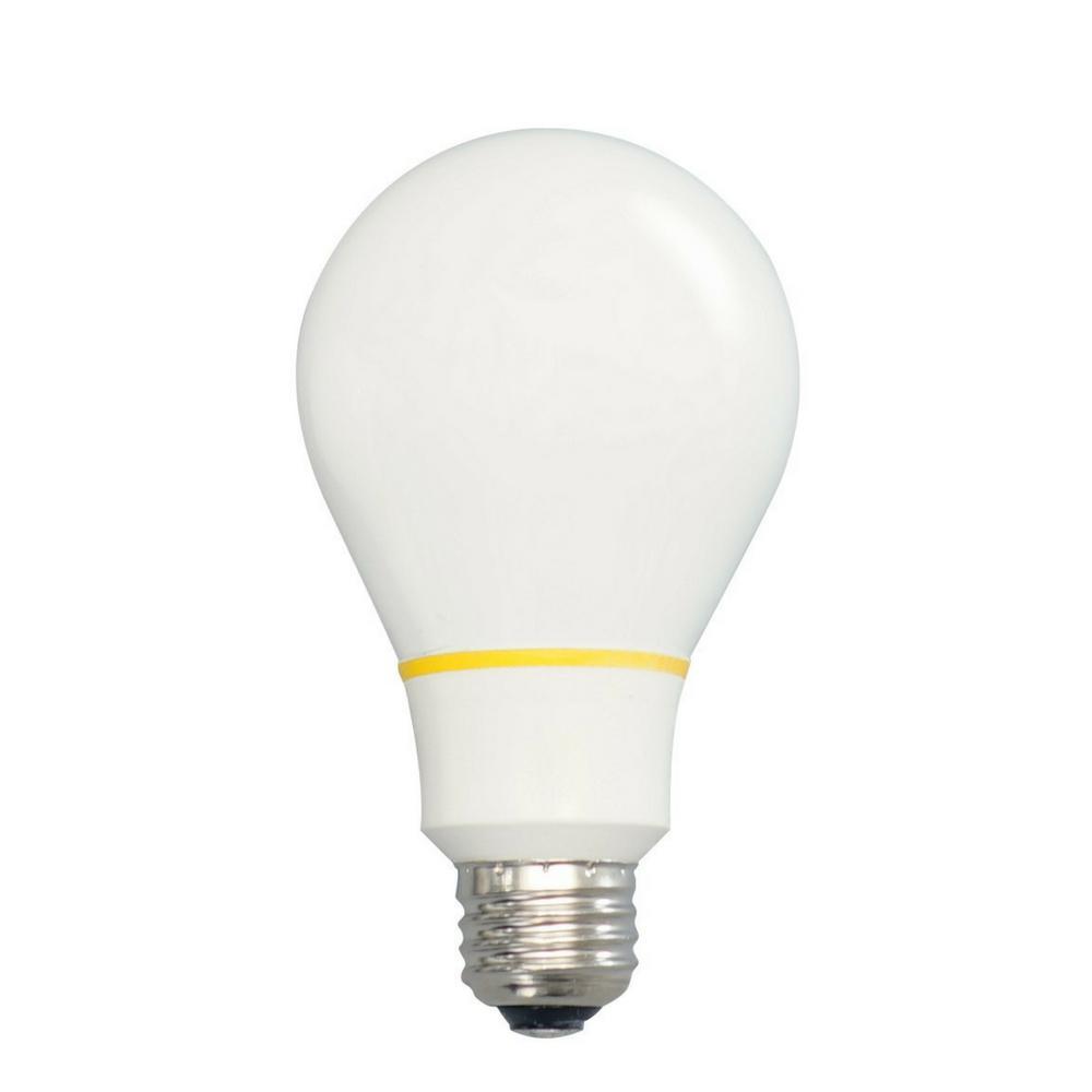 Finally 60W Equivalent Warm White A19 Tesla Light Bulb