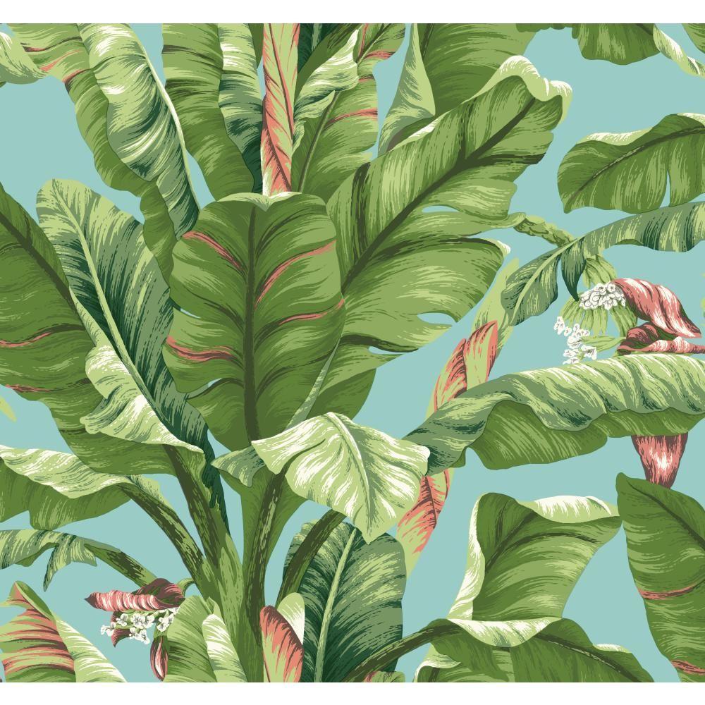 York Wallcoverings Tropics Banana Leaf Wallpaper At The Home Depot