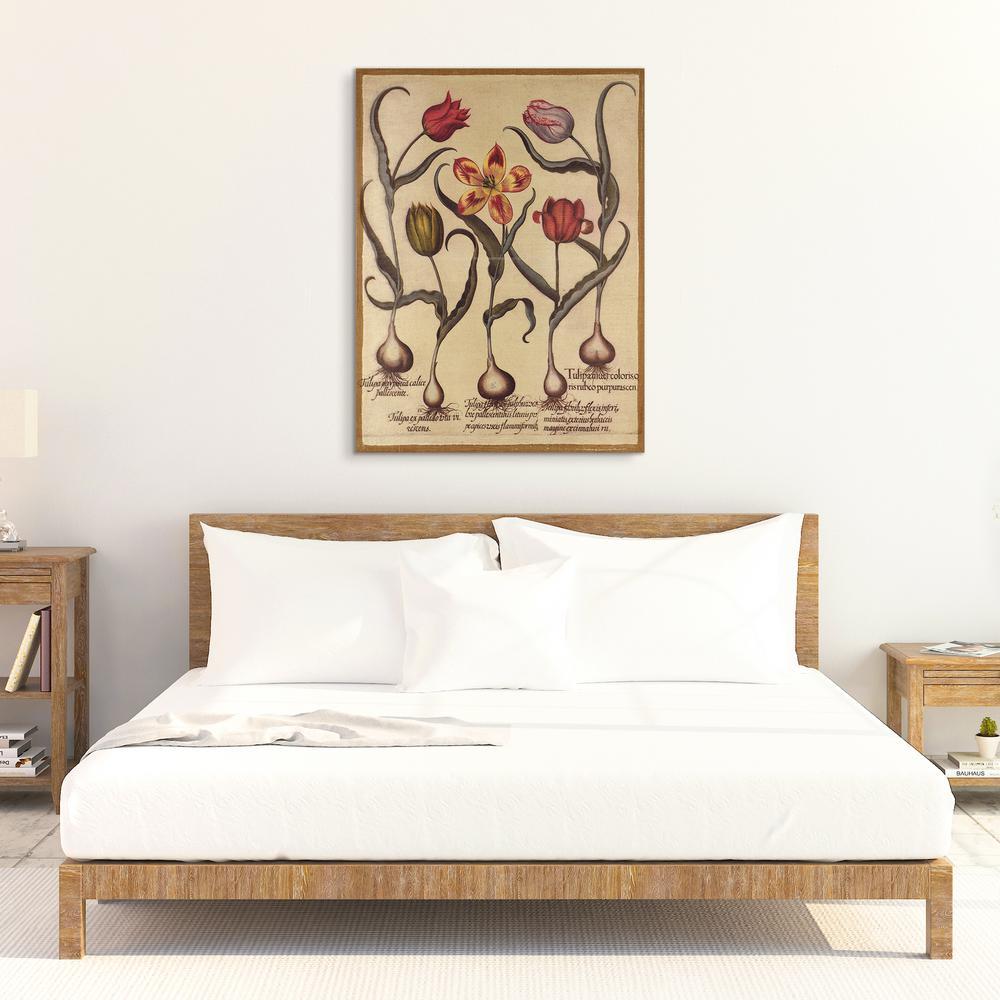 """40 in. x 30 in. """"Botanical B"""" Digital Print on Fresco Jute Wall Art"""