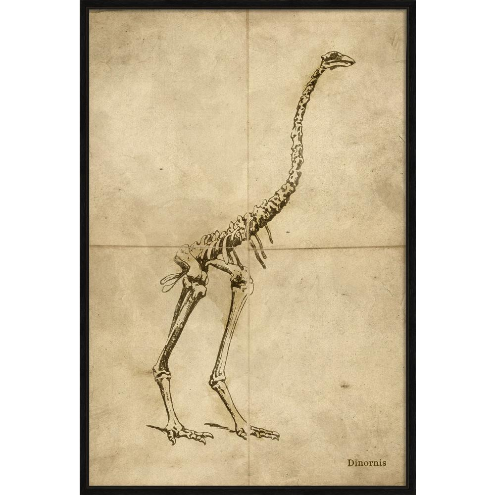 "26 in. x 38 in. ""Dinornis"" Framed Giclee Print Wall Art"