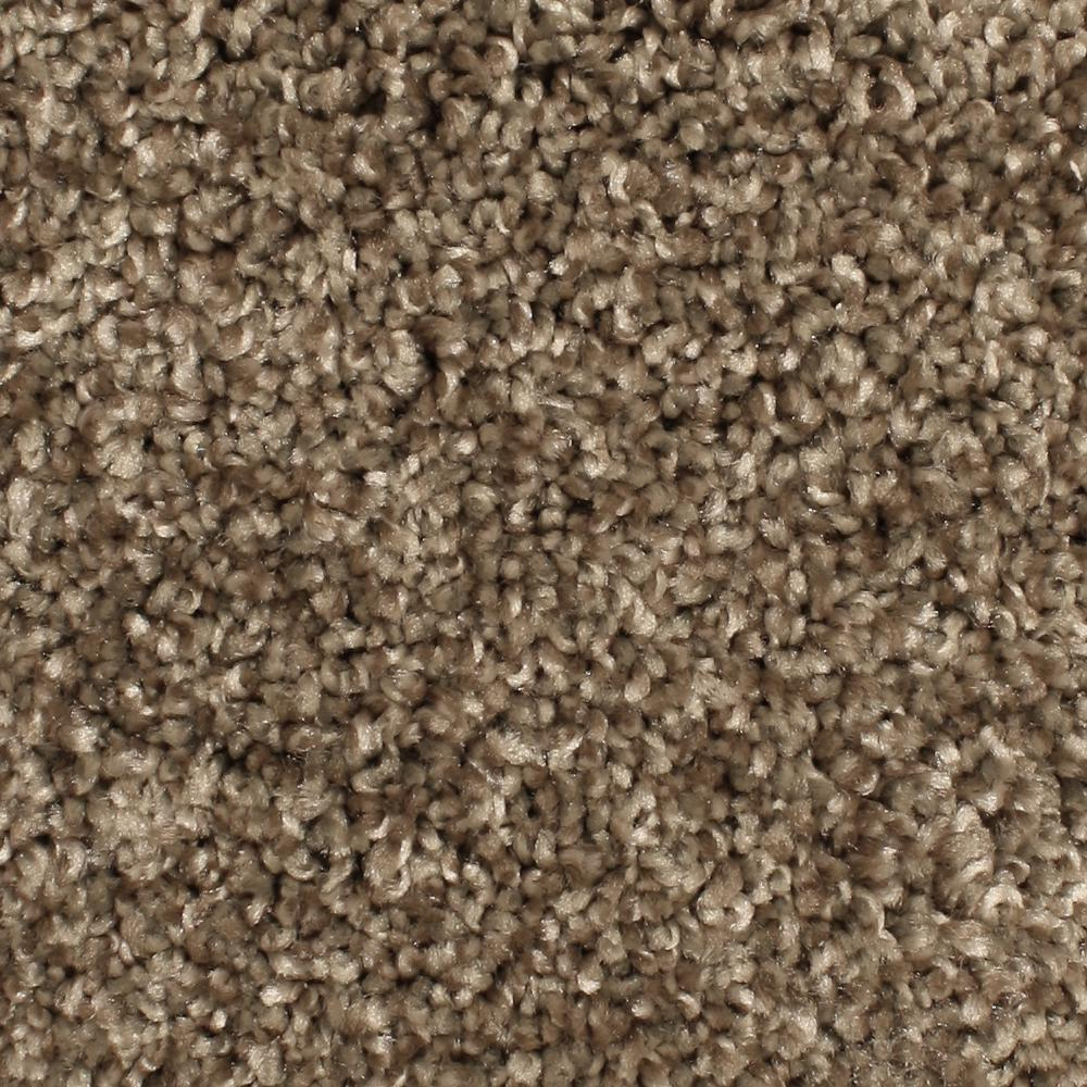 Home Decorators Collection Carpet Sample Pioneer Color
