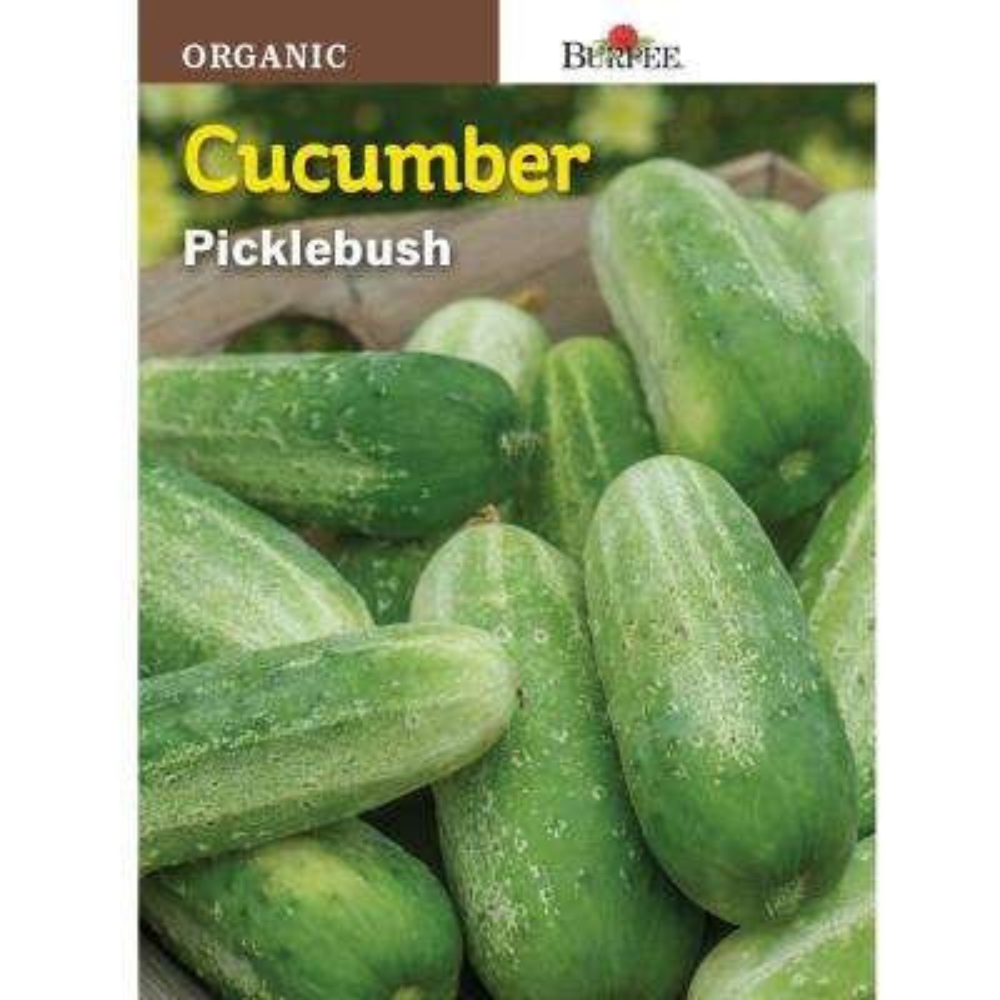 Picklebush Organic Cucumber Seed