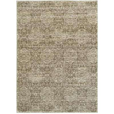 Soft Shag Dark Beige/Cream Rectangle 9 ft. x 12 ft. Indoor Area Rug