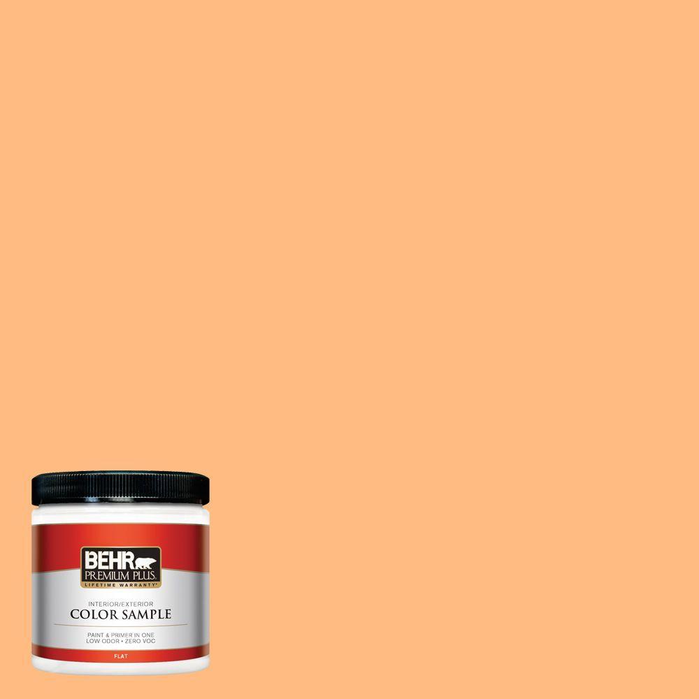 8 oz. #270B-4 Apricot Flower Interior/Exterior Paint Sample