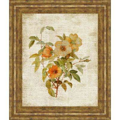 """22 in. x 26 in. """"Roses on Newsprint I"""" by Lanie Loreth Framed Printed Wall Art"""