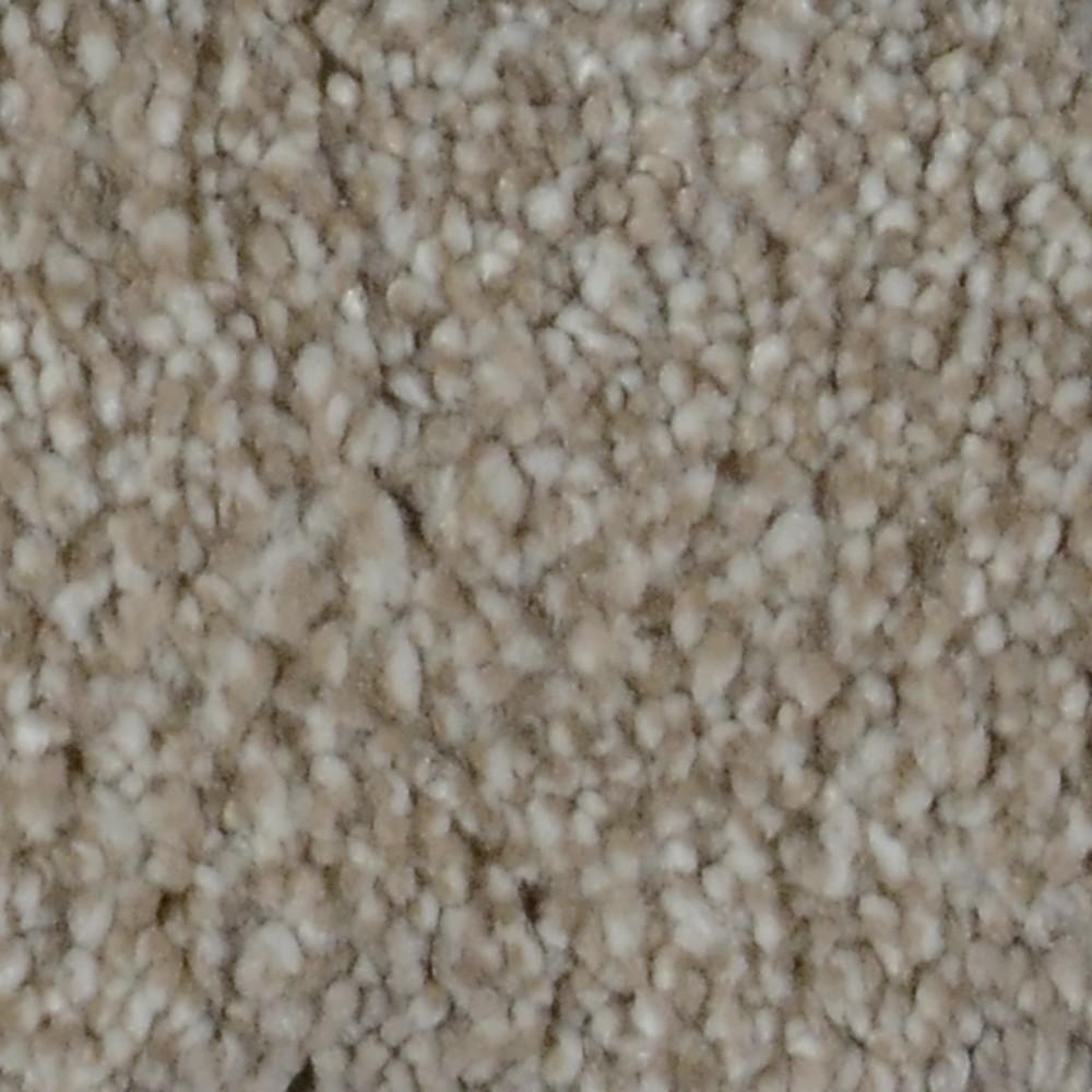 Platinum Plus Carpet Sample Harvest Iii Color Yancey Texture 8 In X