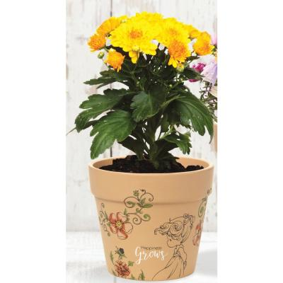 Happiness Grows 4 in. Dia Terra Cotta Small Pot