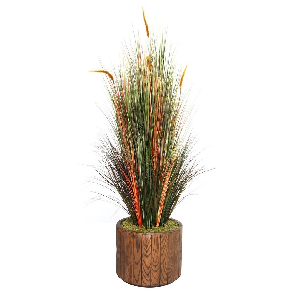 65 in. Tall Onion Grass with Cattails in 16 in. Fiberstone