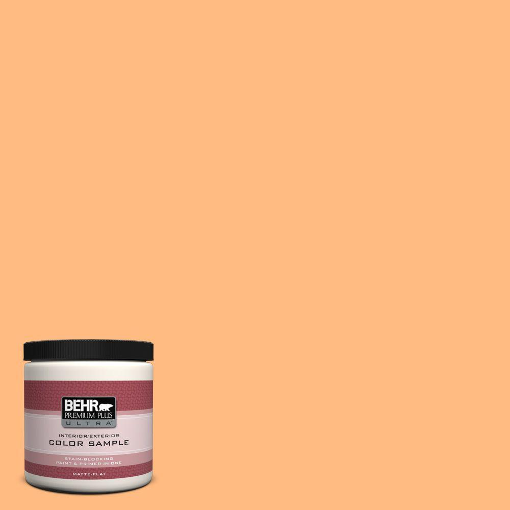 BEHR Premium Plus Ultra 8 oz. #270B-4 Apricot Flower Interior/Exterior Paint Sample