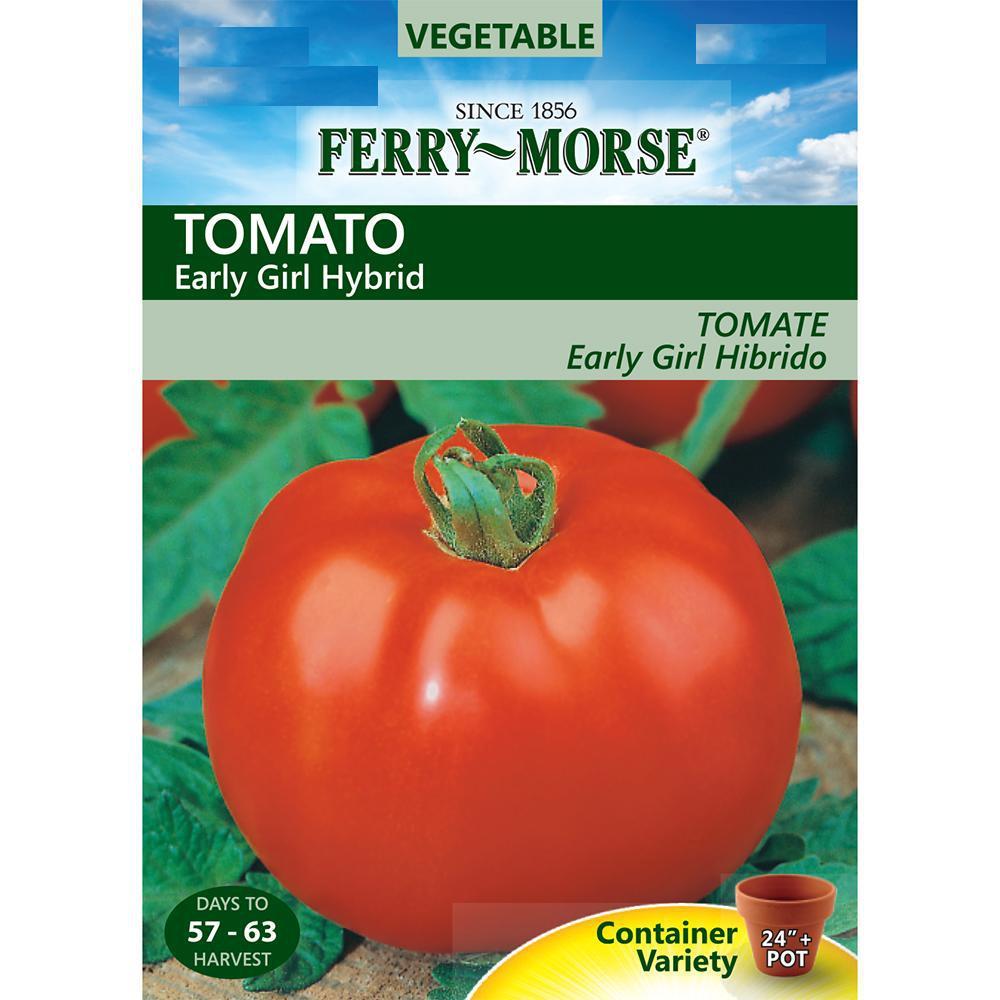 Tomato Early Girl Hybrid Seed