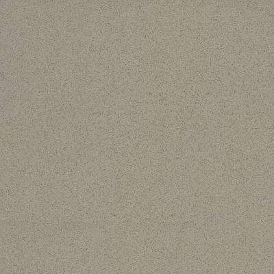 2 in. x 4 in. Quartz Countertop Sample in Lena