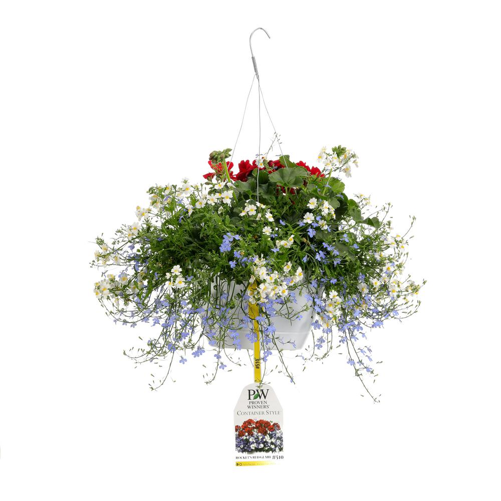 Proven Winners 10 in. Rocket's Red Glare Combination Hanging Basket, Live Plants, Red, White, and Blue Flowers