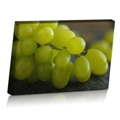 24 in. x 16 in. Rustic Grapes Printed Canvas