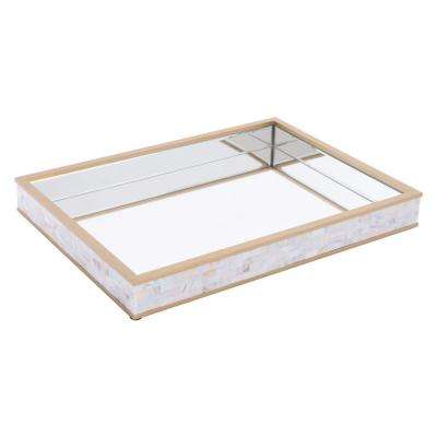 Mirror and Mop Tray