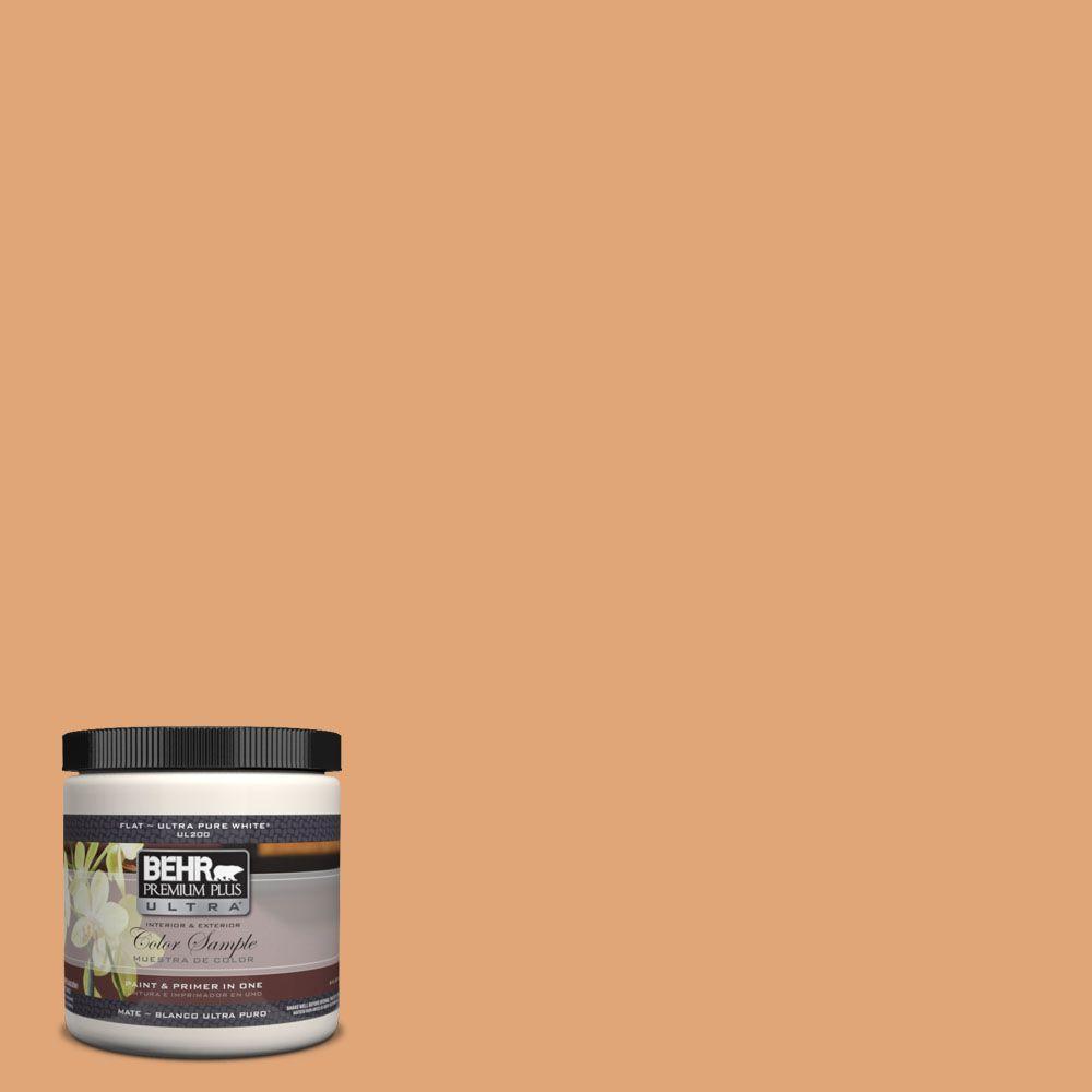 BEHR Premium Plus Ultra 8 oz. #280D-4 Caramel Sundae Interior/Exterior Paint Sample
