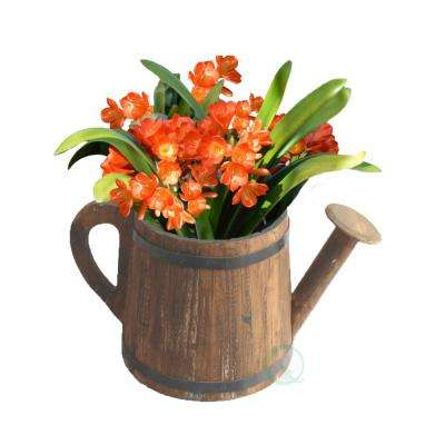 15 in. W x 7 in. D x 8 in. H Wood Watering Pail Planter