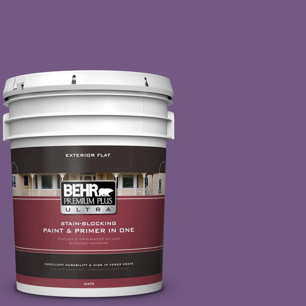 5-gal. #650B-7 Mystical Purple Flat Exterior Paint