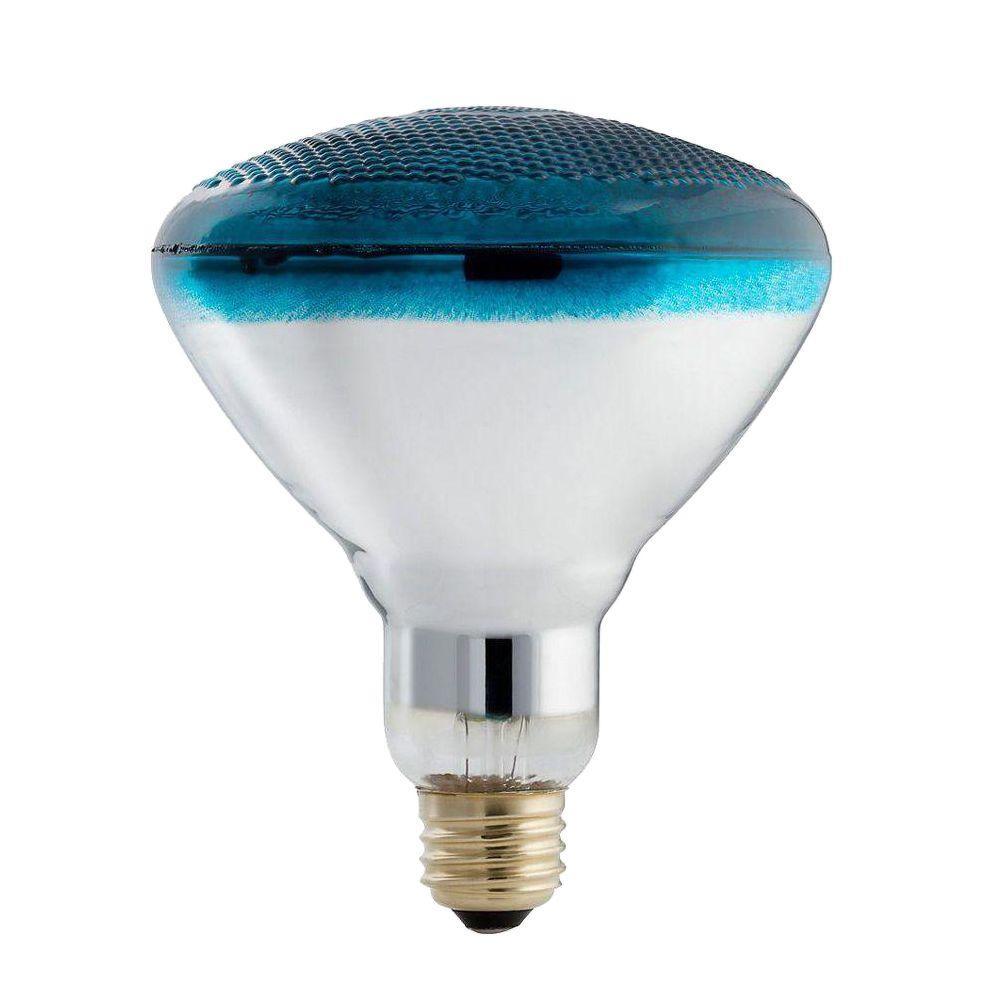philips autism speaks 100 watt incandescent par38 blue flood light bulb 6 pack 385328 the. Black Bedroom Furniture Sets. Home Design Ideas