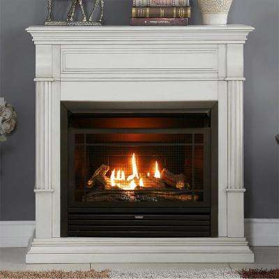40 in. Ventless Dual Fuel Gas Fireplace in Antique White with Remote Control