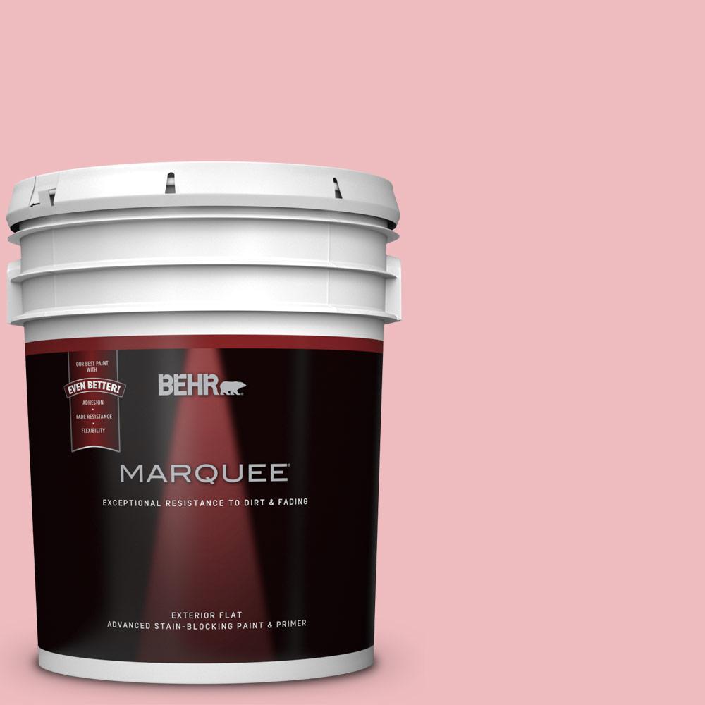 BEHR MARQUEE 5-gal. #P160-2 Blush Rush Flat Exterior Paint-445005 ...