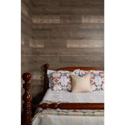 1/4 in. x 48 in. x 96 in. Barnwood Gray Wood Shiplap Panel