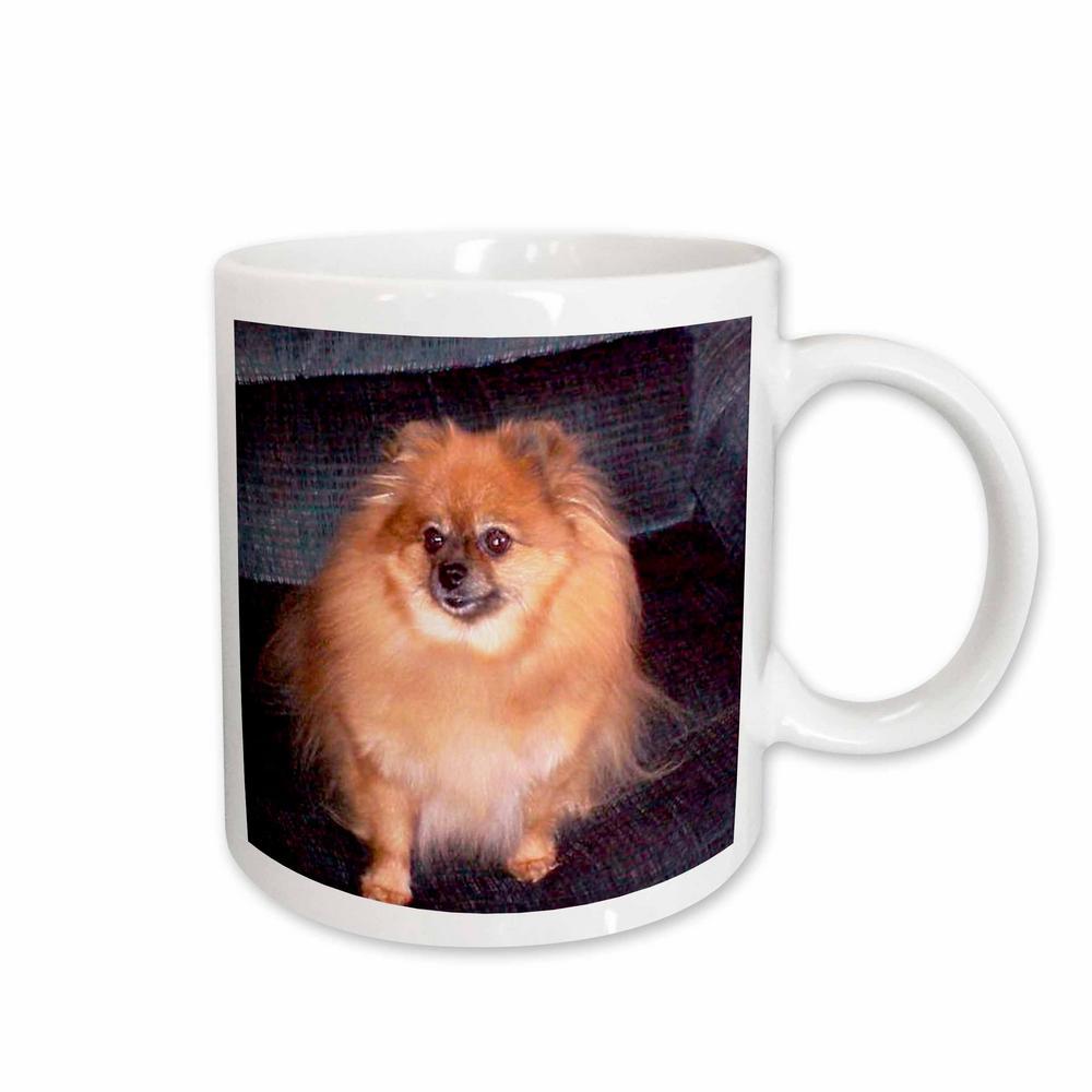 Dogs 11 oz. White Ceramic Pomeranian Dog Mug
