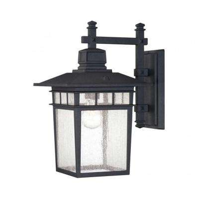 Garcia 1-Light Textured Black Outdoor Wall Mount Lantern