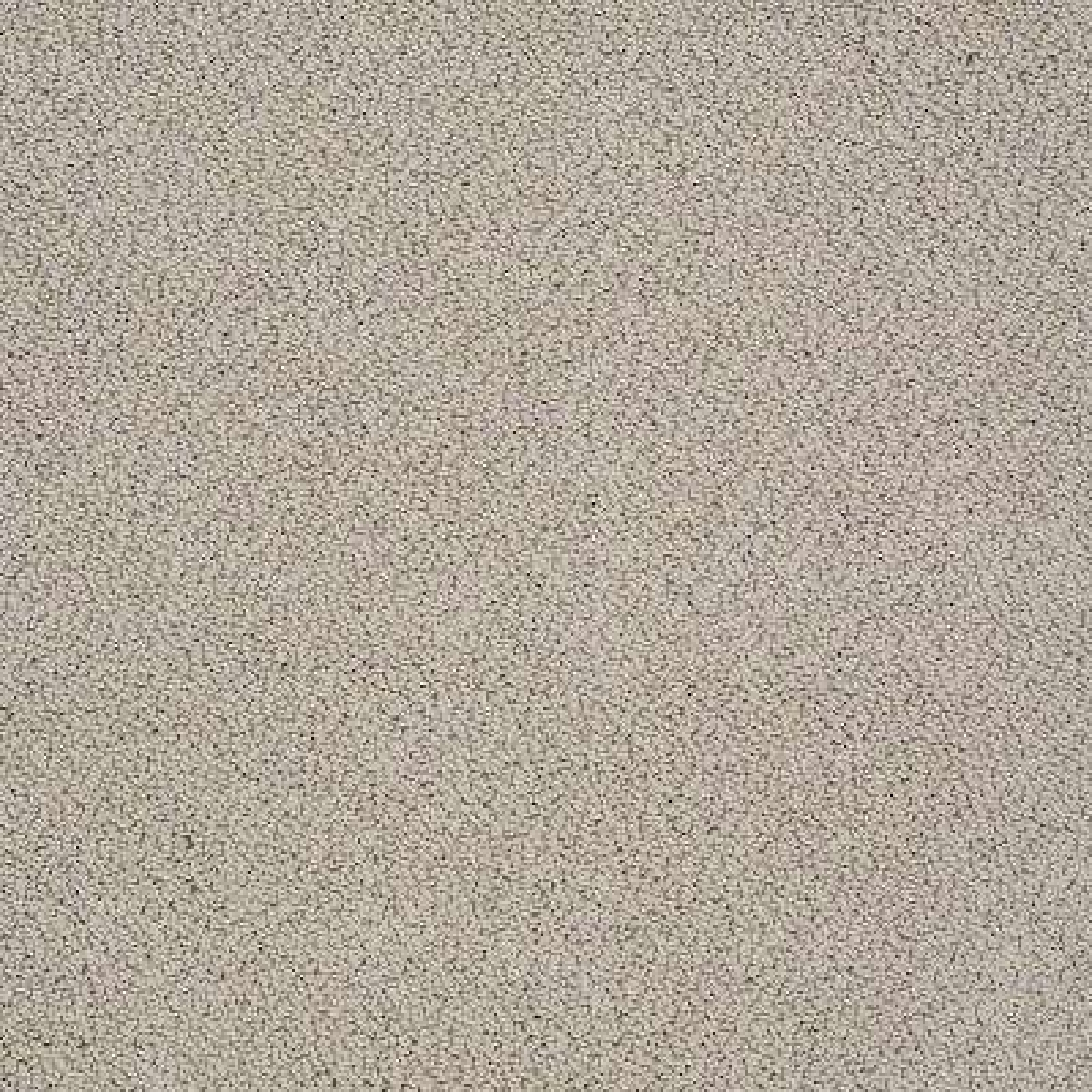 Carpet Sample - Braidley - In Color Autumn Tan 8 in. x 8 in.
