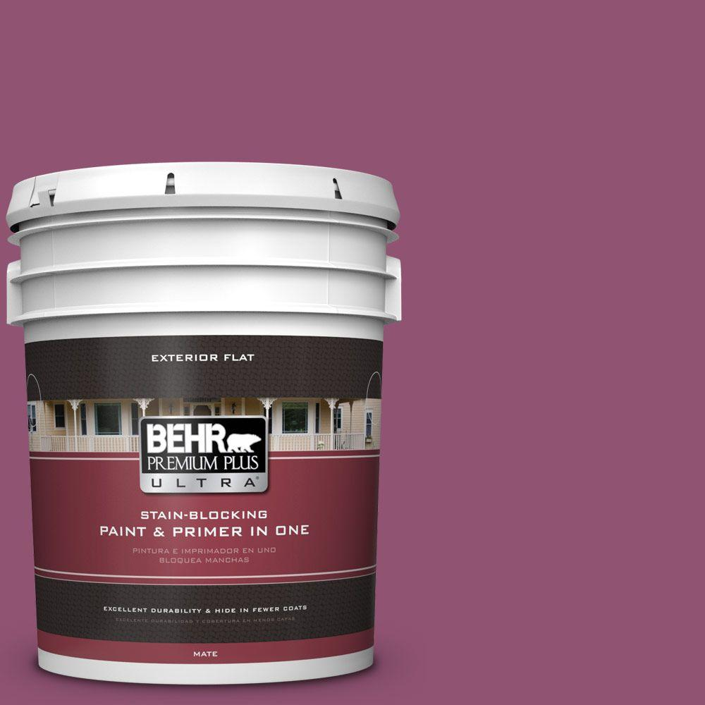 5 gal. #HDC-AC-28A Carnation Festival Flat Exterior Paint